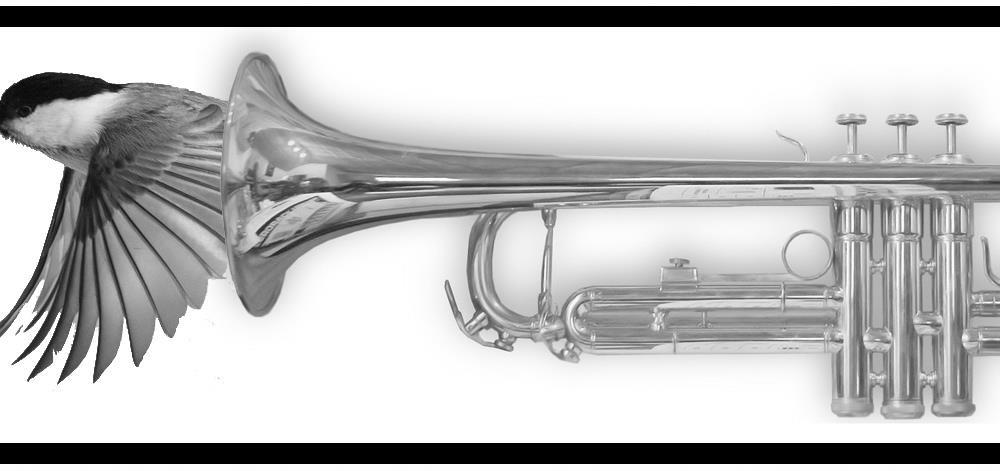 trompet med fulg i